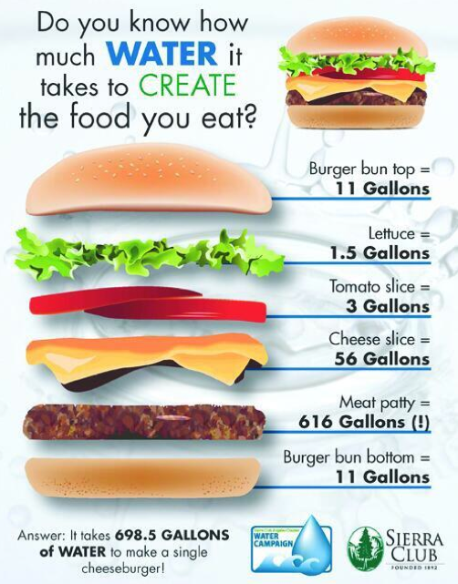 How Much Food Should You Eat A Day